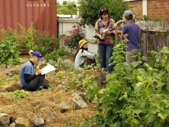 Open Source Permaculture On Its Way to the Internet | Sustainable Futures | Scoop.it