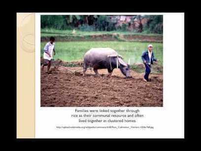 Food Monographs   Ethnoecology   Scoop.it