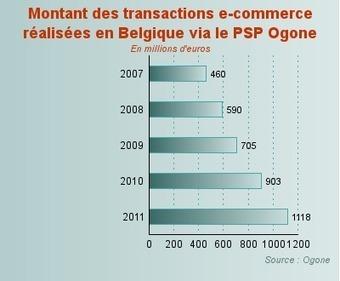 Chiffre d'affaires de l'e-commerce en Belgique | Revue de presse pour commerçants connectés | Scoop.it