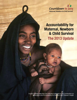 2013 Accountability Report - Countdown to 2015   Youth Matters   Scoop.it