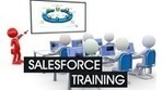 Salesforce.com CRM (SFDC) Complete Admin and Developer Tutorial | Salesforce SFDC CRM Tutorials Free | Scoop.it