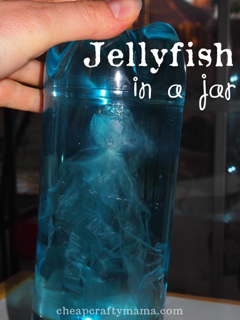 """J"" is for Jellyfish | Parent Autrement à Tahiti | Scoop.it"