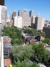 Urban Forests: Is Quality More Important Than Quantity? | Tree Preservation Planning | Scoop.it