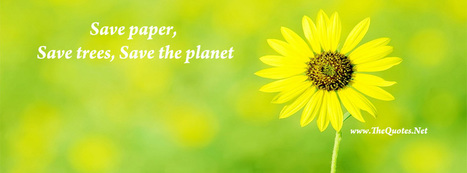 Facebook Cover Image - Beautiful Flower - TheQuotes.Net | Facebook Cover Photos | Scoop.it