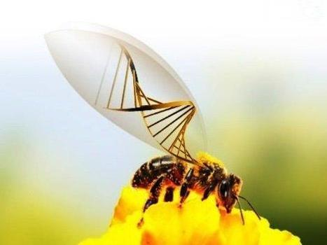 Questions swarm around synthetic biology's impact on Mother Nature | SynBioFromLeukipposInstitute | Scoop.it