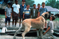 20 Things We Learned About The Sandlot After Talking With Scotty Smalls | TIME.com | Ken's Odds & Ends | Scoop.it