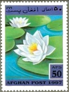 Nymphaea odorata – Michel AF 1733 | Philately, Books & Comics | Scoop.it