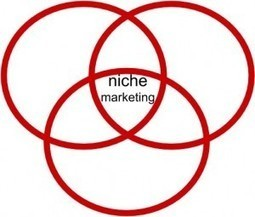 Niche Market Ideas: Find A Need And Fill It | Bree Noble | Online Marketing Advice | Scoop.it