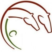 Equine Zooanthropology | Holistic Horses from PENZANCE Equine Integrative Solutions | Scoop.it