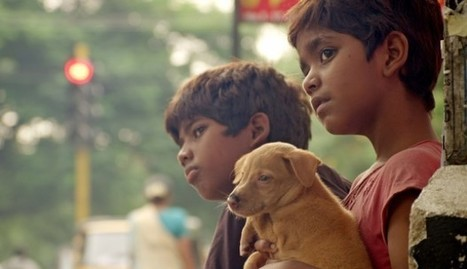Film review: The Crow's Egg is a  light-hearted gem from Tamil cinema   Cine Asiático (Asian Cinema)   Scoop.it