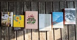 Goldsmiths prize shortlists novels 'that break the mould' | Bibliobibuli | Scoop.it