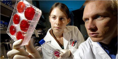 Stem cells from muscle tissue 'may help cure neurodegenerative diseases' | | #ALS AWARENESS #LouGehrigsDisease #PARKINSONS | Scoop.it
