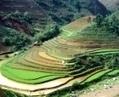 Quels sont les points importants du Vietnam ? | Circuits et voyages Vietnam | Scoop.it