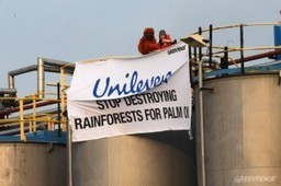 Unilever and how to greenwash tropical devastations | A2 Development and Globalisation | Scoop.it