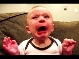 Funny Videos ★ Best Funny Baby Video Compilation 2016 ★ New Funny Videos 2016 | Education | Scoop.it