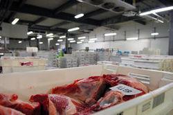 Le scandale de la viande, PSA, Renault, Hollande en Inde, Airbus : les 10 actus qui ont marqué la semaine | Econopoli | Scoop.it