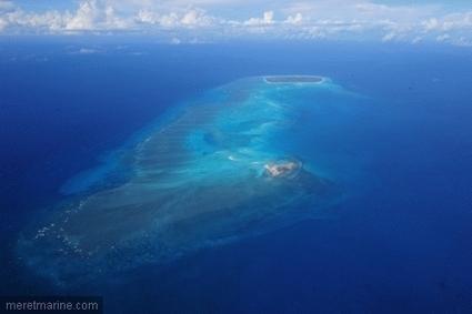 Une réserve pour les raies et autres : création d'un parc marin dans les îles Glorieuses | Rays' world - Le monde des raies | Scoop.it