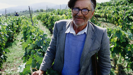 Spanish wine trails: Rioja and Ribera del Duero - travel tips and articles - Lonely Planet | Wine business | Scoop.it