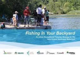 Aquatic Habitat Toronto | Fishing In Your Backyard: An Urban Recreational Fisheries Strategy for the Lake Ontario Northwest Waterfront | Freshwater Fishing | Scoop.it