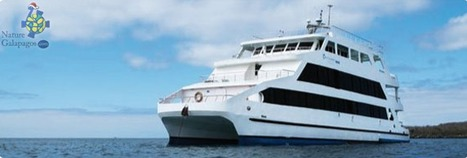 Galapagos Islands Cruises | Luxury Catamaran | Galapagos Queen | Galapagos Island Cruises | Scoop.it
