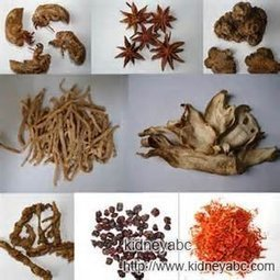 How to Treat Diabetic Nephropathy with Natural Treatment? | kidneydisease | Scoop.it