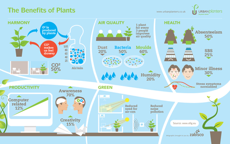 The-benefits-of-plants-edenmakers.jpg (1680×1050) | Outdoor Living | Scoop.it