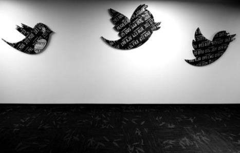 Will Twitter, Inc. Get Into the E-Commerce Business? - DailyFinance   ecommerce   Scoop.it