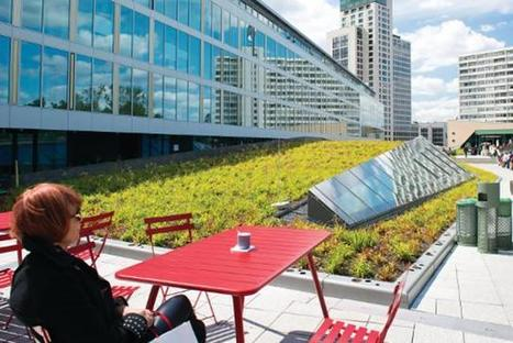 Green roofs can help buildings save energy | Calidad de las aguas urbanas | Scoop.it