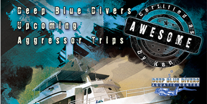 Deep Blue Divers: DIVE TRIPS | Deep Blue Group Divers | Scoop.it