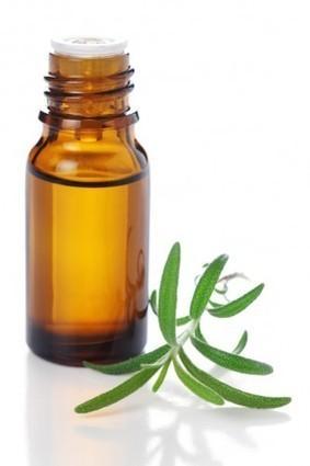 Les huiles essentielles coupe faim | Huiles essentielles HE | Scoop.it