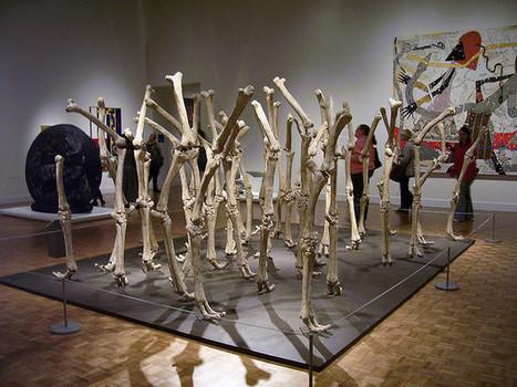 Nancy Graves an Important Figure in the History of Women in Art | Cris Val's Favorite Art Topics | Scoop.it