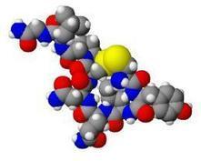 Oxytocin may enhance social function in psychiatric disorders | Social Neuroscience Advances | Scoop.it