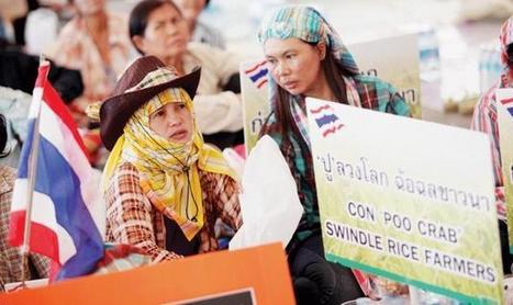 Alert over rice rally - The Nation | Asia-Pacific developments | Scoop.it