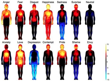 Body maps show where we feel emotion | Wepyirang | Scoop.it