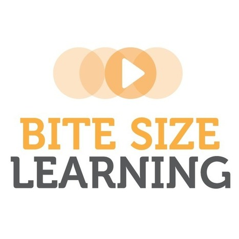 Bite Size Learning | Tech Concepts for the Busy Professional | e-Learning, Instructional Design, online courseware | Scoop.it