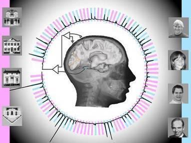 Cet algorithme lit presque en temps réel dans vos pensées | Digital #MediaArt(s) Numérique(s) | Scoop.it
