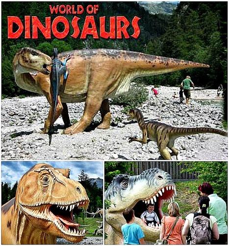 Ancona - World of Dinosaurs - la più spettacolare mostra di dinosauri in Europa! | Le Marche un'altra Italia | Scoop.it