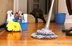 شركة تنظيف بيوت بالرياض | النيل للتسويق الاكتروني | Scoop.it