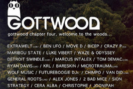 Ben UFO and Move D billed for Gottwood 2013 | DJing | Scoop.it