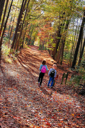 20 family activities for fall - Simple Homeschool | Homeschooling Our Children | Scoop.it