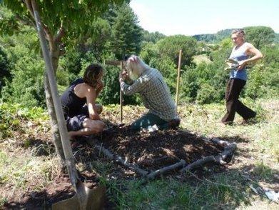 Ça y est ! J'ai compris ce qu'est la permaculture ! | Solutions alternatives pour un monde en transition | Scoop.it