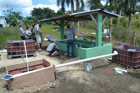 USA - Millennials Break Ground and Create Hope:  Use Eco-Trip to Stimulate Business! | Aquaponics in Action | Scoop.it