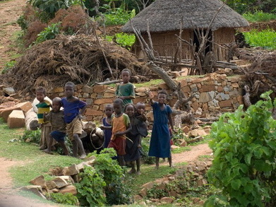 Displacement, intimidation and abuse: land loyalties in Ethiopia | openDemocracy | Transformative Space | Scoop.it