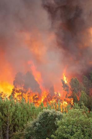 A Fiery Future - Pasadena Weekly | Canyon Crest Apartments in Santa Clarita CA | Scoop.it