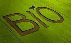 Agriculture : le tout bio, c'est possible | Des 4 coins du monde | Scoop.it