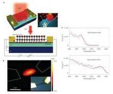 Research group creates highly sensitive photodetector from graphene and quantum dots | Cool Future Technologies | Scoop.it