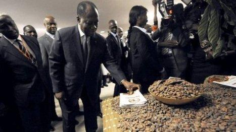 La Côte d'Ivoire tarde à exploiter son potentiel minier | La relance de l'économie ivoirienne après la crise post-électorale | Scoop.it