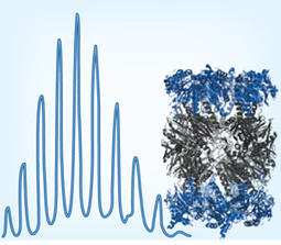 Mass spectrometry of intact protein complexes : Nature Methods : Nature Publishing Group   Power of Protein Crystal Structures   Scoop.it