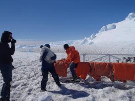Mireille au pays des #manchots : C'est tout doux un poussin #Antarctique #TAAF #IPEV | Arctique et Antarctique | Scoop.it