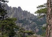 Corsica zo anders | Geschiedenis cultuur en veel meer over Corsica | Scoop.it